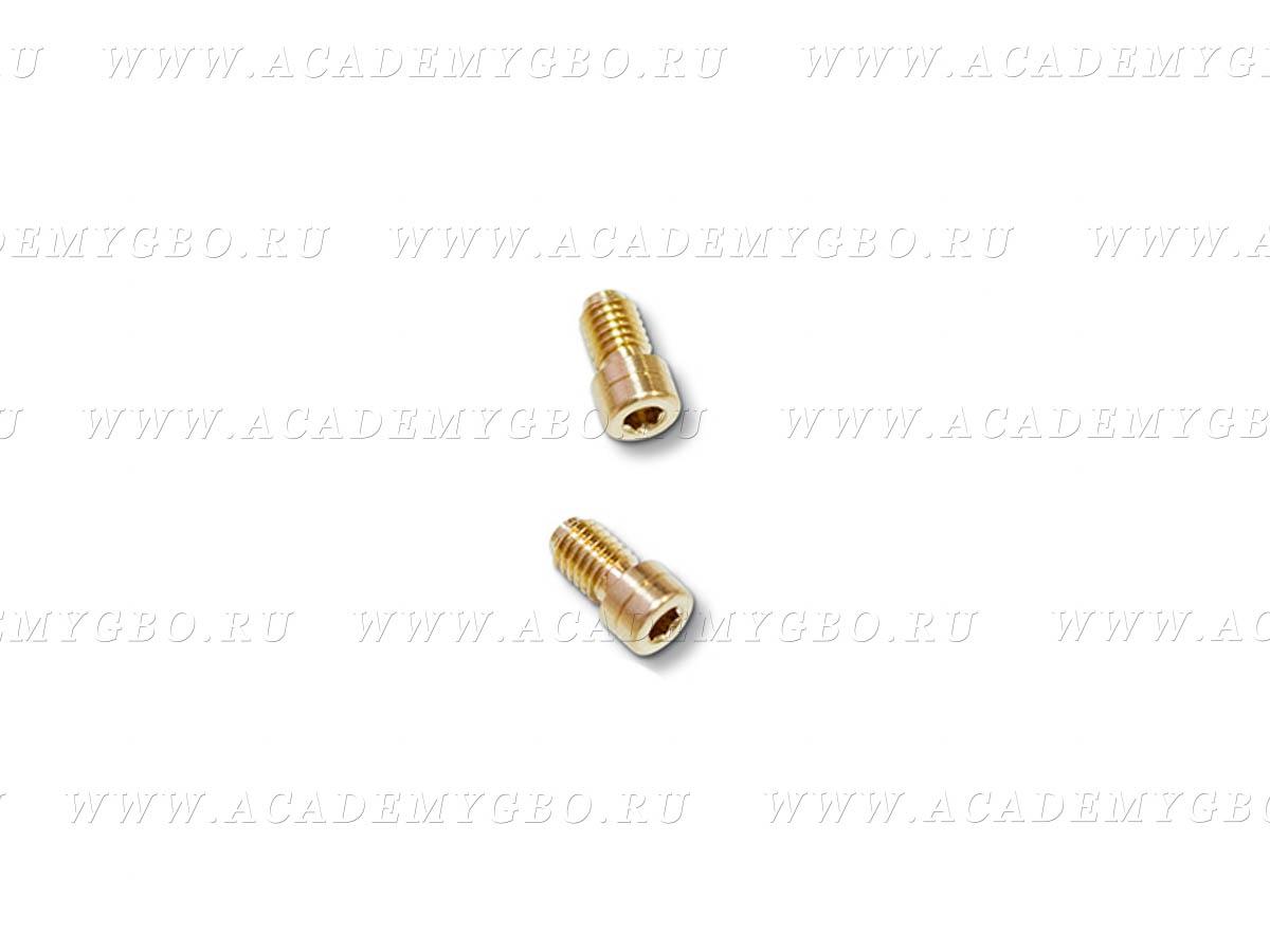 Жиклер 1.5 мм для рампы GEMINI