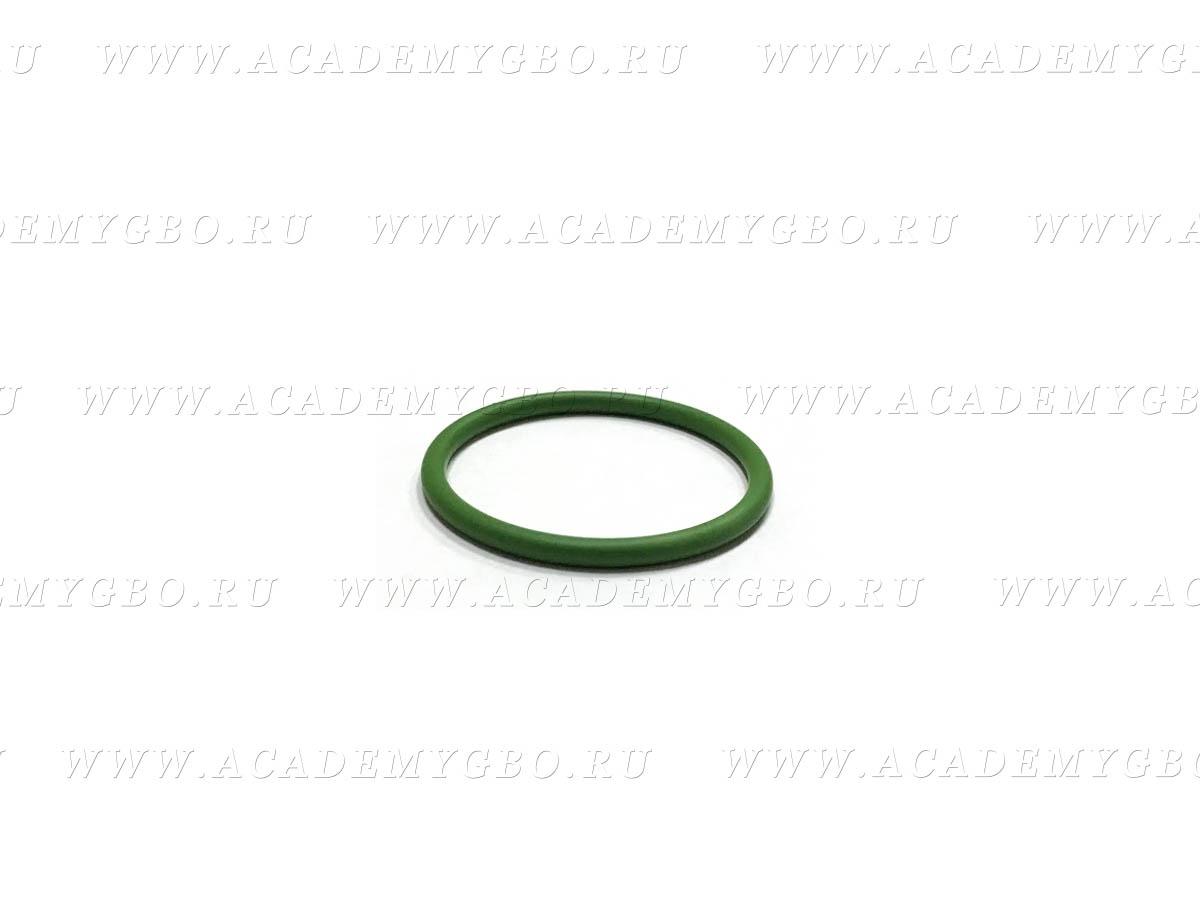 Уплотнительное кольцо под фильтр Lovato 3.2L (зеленое)