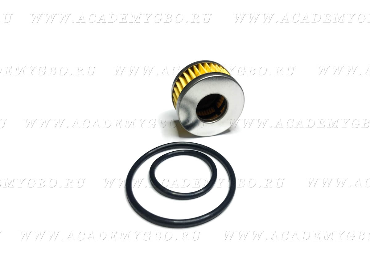 Фильтр газа с уплотнителями для редуктора Tomasetto | аналог |