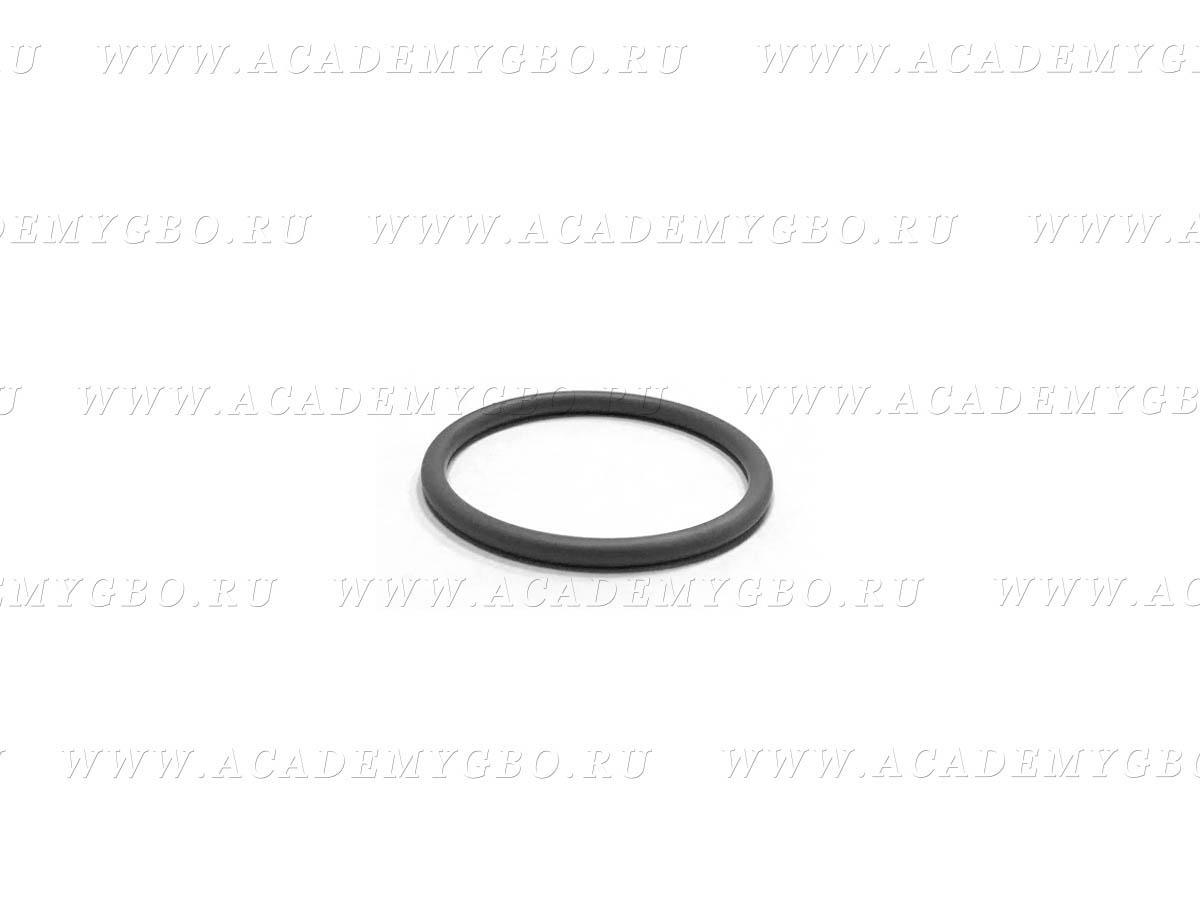 Уплотнительное кольцо под фильтр Lovato 3.2L (черное)
