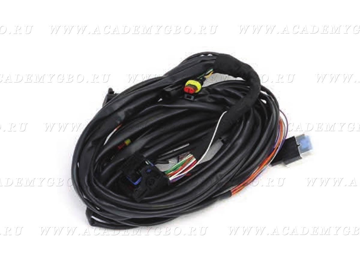 Проводка ЭБУ CNG S32 GP13 4 цил.